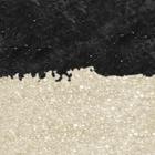 04 Black & Ice Gold